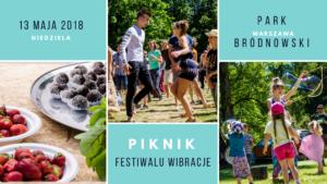 piknik festiwalu wibracje