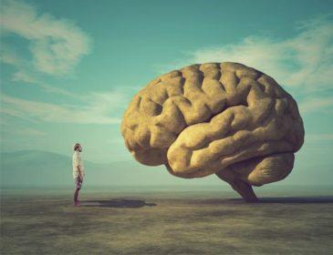 Wyluzuj! Przewlekły stres wykańcza ciało i ducha. Biofeedback z odsieczą