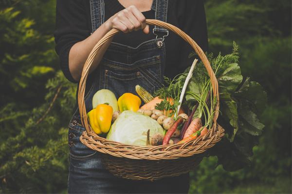 Dieta ro艣linna w praktyce