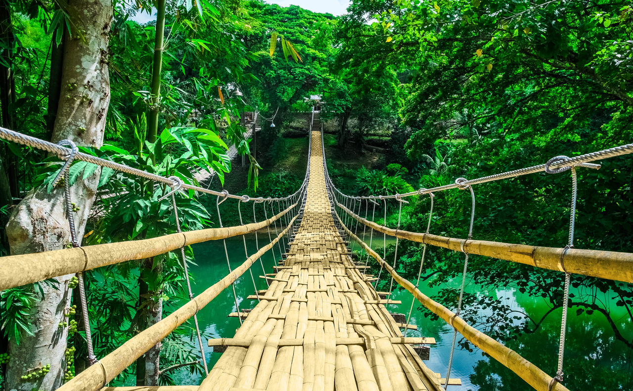 Psychodeliki – mosty zamiast murów