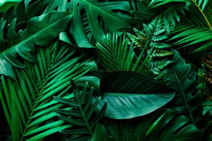 Gramy w zielone – eko na Festiwalu Wibracje 2020