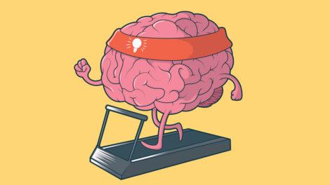 ABC zdrowego mózgu